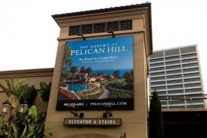 Fi-Pelicanhill_new